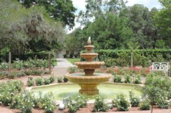 rose_fountain